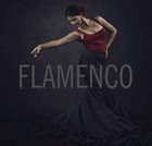 FLAMENCO - sampler