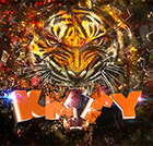 kkty-tiger-country-radio