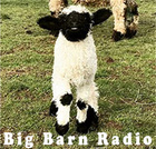 Big Barn Radio